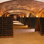 Underground-Cathedrals-in-Canelli
