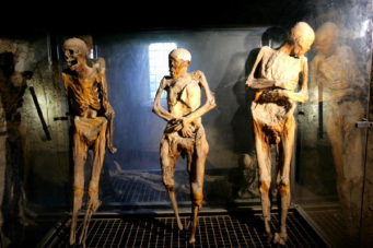 Weird Italy ferentillo-mummies-003-341x227 The Creepy mummies of Ferentillo in Italy Italian History Magazine What to see in Italy  Umbria pilgrims mummies microfungus ferentillo mummies Church of Santo Stefano burial ground bodies