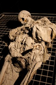 Weird Italy ferentillo-mummies-011-190x285 The Creepy mummies of Ferentillo in Italy Italian History Magazine What to see in Italy  Umbria pilgrims mummies microfungus ferentillo mummies Church of Santo Stefano burial ground bodies