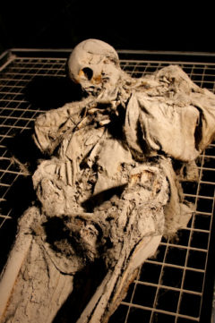 Weird Italy ferentillo-mummies-011-240x361 The Creepy mummies of Ferentillo in Italy Featured Italian History Magazine What to see in Italy  Umbria pilgrims mummies microfungus ferentillo mummies Church of Santo Stefano burial ground bodies