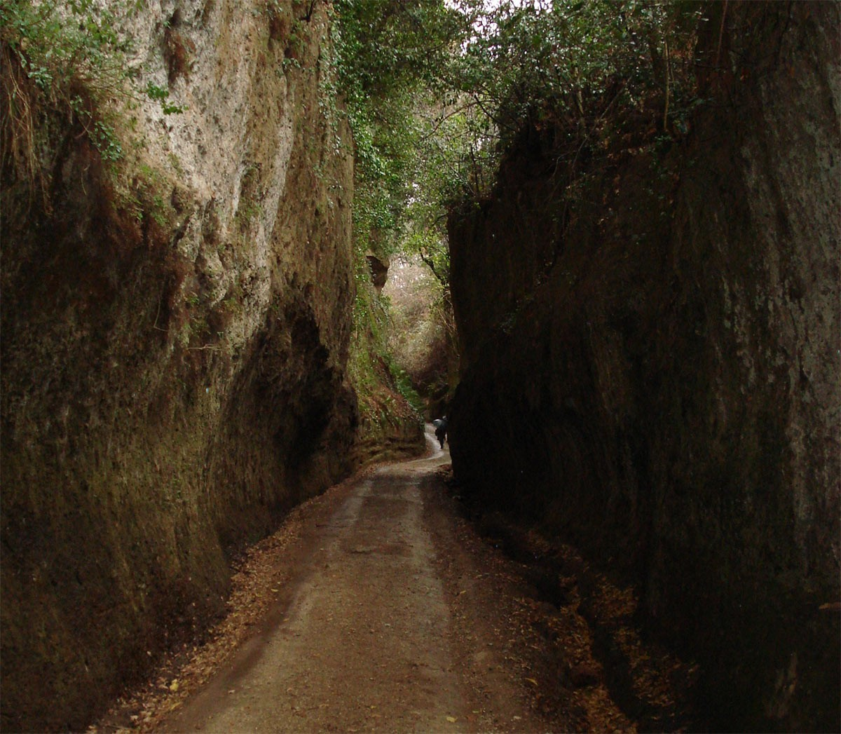 Weird Italy vie-cave-italy The Vie Cave, The Ancient Paths of Etruscan People Carved Into The Rocks Featured Italian History Magazine Nature in Italy What to see in Italy  vie cave via clodia tuscany sunken roads sovana sorano roman pitigliano maremma history grosseto etruscan etruria cavoni