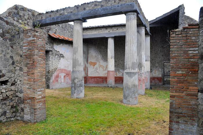 Weird Italy romulus-remus-3 Three amazing Roman Villas reopened in Pompeii Italian History Magazine What to see in Italy  villas the House of Romulus and Remus romans roman architecture Pompeii paintings House of Marco Lucrezio Frontone Home of Triptolemus domus architecture