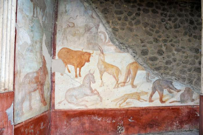 Weird Italy romulus-remus Three amazing Roman Villas reopened in Pompeii Italian History Magazine What to see in Italy  villas the House of Romulus and Remus romans roman architecture Pompeii paintings House of Marco Lucrezio Frontone Home of Triptolemus domus architecture