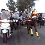 Horse street racing