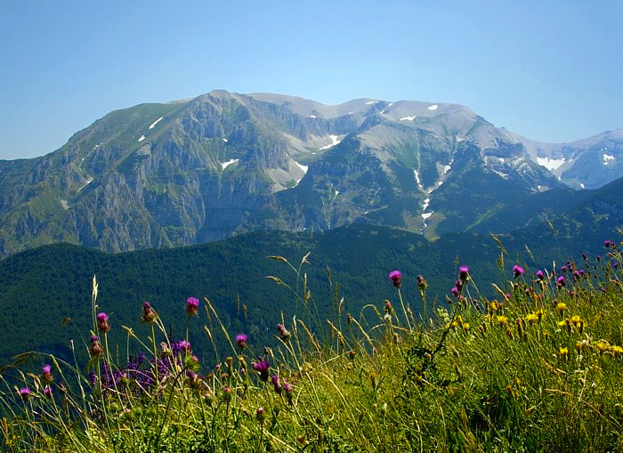 Weird Italy majella-nature-reserve Biggest wildlife sanctuary in Italy: Majella National Park Featured Magazine Nature in Italy What to see in Italy  wildlife pescara mountains monte amaro massif majella maiella nature reserve Maiella National Park chieti abruzzo