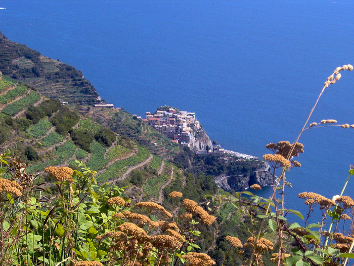 Weird Italy manarola-001 Enchanting Manarola of The Five Lands Featured Magazine What to see in Italy  world heritage UNESCO seaside sea nature reserve mar tirreno manarola liguria cinque terre