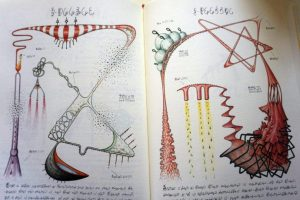 Weird Italy Codex-Seraphinianus-12-300x200 Codex Seraphinianus, the surreal encyclopedia by Luigi Serafini Italian Art, Design & Photography Italian Books Magazine  surreal encyclopedia sci-fi Luigi Serafini Italo Calvino italian artist illustration Codex Seraphinianus
