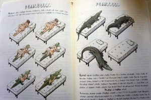 Weird Italy Codex-Seraphinianus-13-300x200 Codex Seraphinianus, the surreal encyclopedia by Luigi Serafini Italian Art, Design & Photography Italian Books Magazine  surreal encyclopedia sci-fi Luigi Serafini Italo Calvino italian artist illustration Codex Seraphinianus