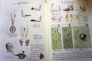 Weird Italy Codex-Seraphinianus-4-300x200 Codex Seraphinianus, the surreal encyclopedia by Luigi Serafini Italian Art, Design & Photography Italian Books Magazine  surreal encyclopedia sci-fi Luigi Serafini Italo Calvino italian artist illustration Codex Seraphinianus