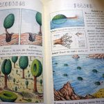 Weird Italy Codex-Seraphinianus-7-150x150 Codex Seraphinianus, the surreal encyclopedia by Luigi Serafini Italian Art, Design & Photography Italian Books Magazine  surreal encyclopedia sci-fi Luigi Serafini Italo Calvino italian artist illustration Codex Seraphinianus