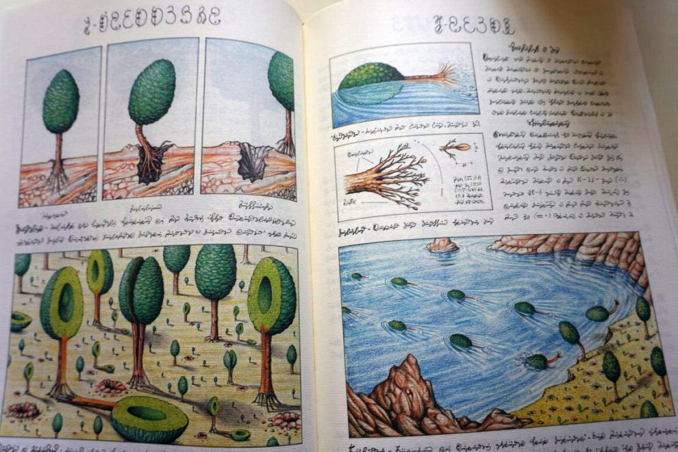Weird Italy Codex-Seraphinianus-7 Codex Seraphinianus, the surreal encyclopedia by Luigi Serafini Featured Italian Art, Design & Photography Italian Books Magazine  surreal encyclopedia sci-fi Luigi Serafini Italo Calvino italian artist illustration Codex Seraphinianus