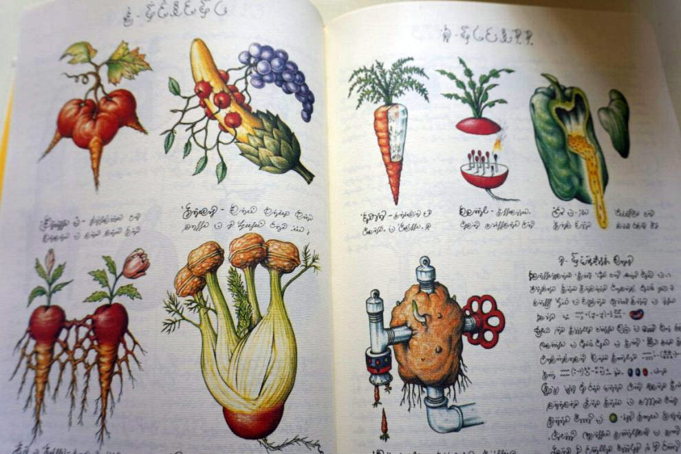 Weird Italy Codex-Seraphinianus-8 Codex Seraphinianus, the surreal encyclopedia by Luigi Serafini Featured Italian Art, Design & Photography Italian Books Magazine  surreal encyclopedia sci-fi Luigi Serafini Italo Calvino italian artist illustration Codex Seraphinianus