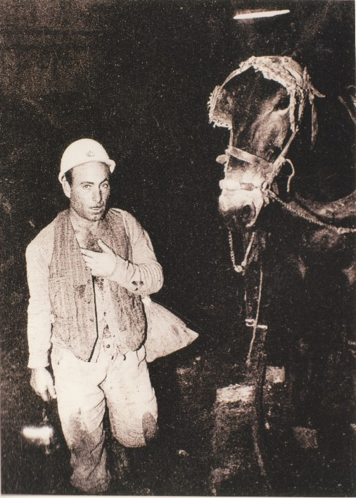 Weird Italy miner-donkey The lives of the Carusi, the slave miners of Sicily Featured Italian History Italy Crime News and Criminal Investigations Magazine  SULPHUR MINES sicily picuneri old photographs old images of Italy old images mines miners mine-boy Illegal labour Floristella Grottacalda Floristella Child Slavery in Sicily carusu carusi