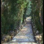 Villa-d'Este,-Tivoli,-Lazio,-Italy-4