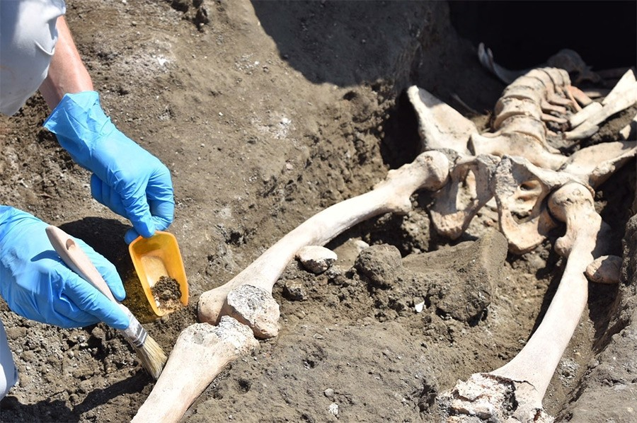 skeleton-pompeii