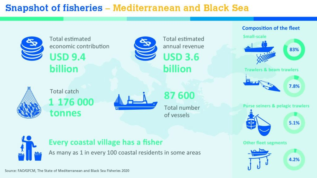 Weird Italy Mediterranean-overexploitation-1024x576 Mediterranean and Black Sea fisheries are turning the corner on overexploitation Latest Italian News and Videos  mediterranean sea mediterranean climate fishery environment