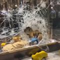 Weird Italy police-make-wave-of-arrests-over-turin-rioting-looting-120x120 Police make wave of arrests over Turin rioting, looting What happened in Italy today