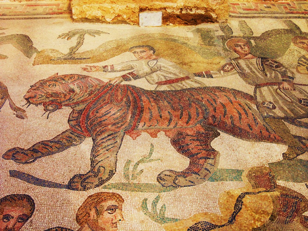 Weird Italy A-captive-tigress-in-the-big-game-hunt-mosaic The astonishing mosaics of the Roman Villa del Casale Featured Italian History What to see in Italy  romans roman history