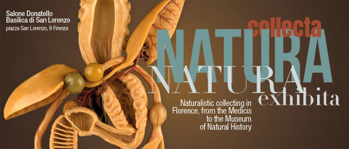 Natura Collecta, Natura Exhibita